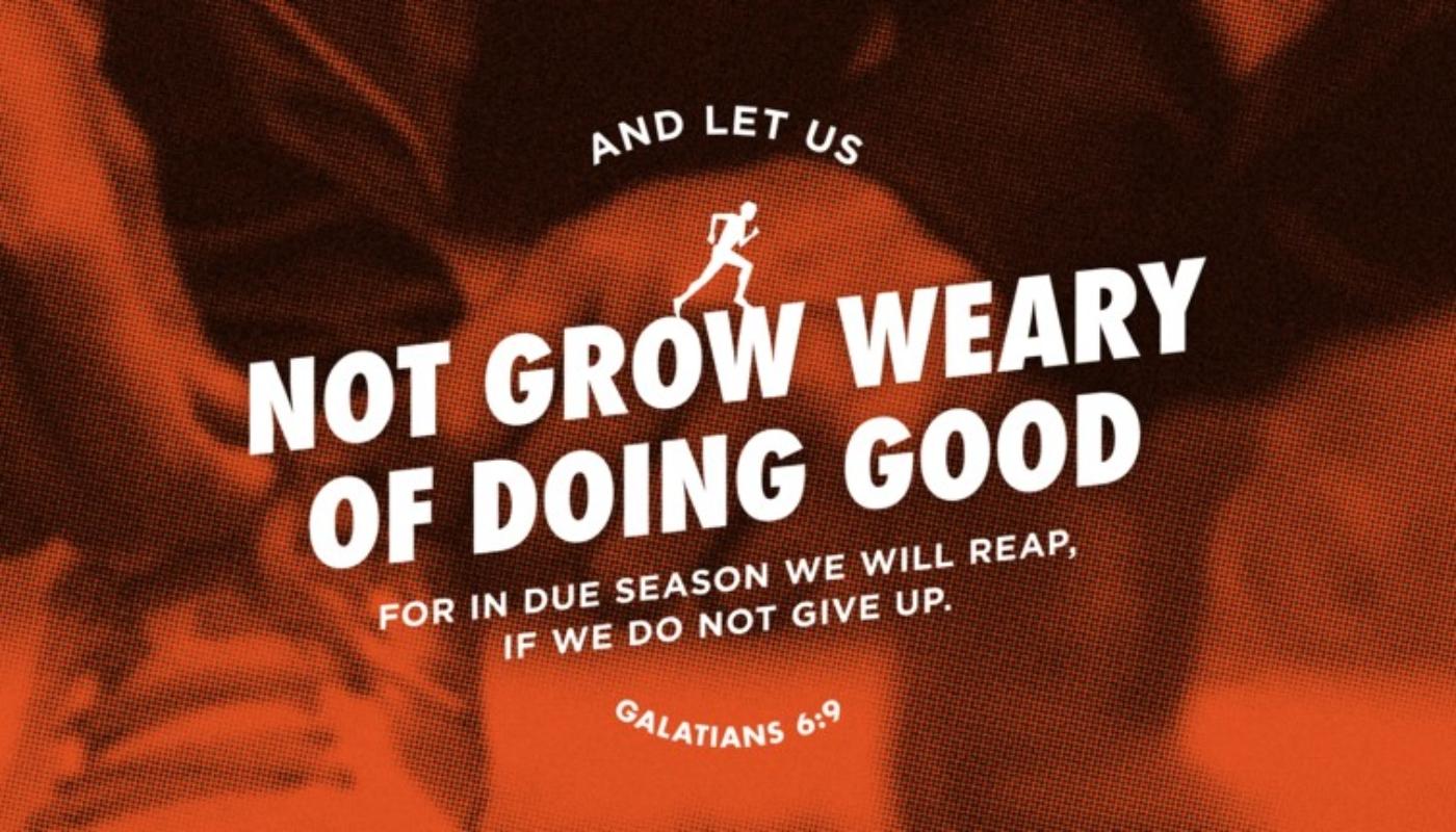 Galatians 6